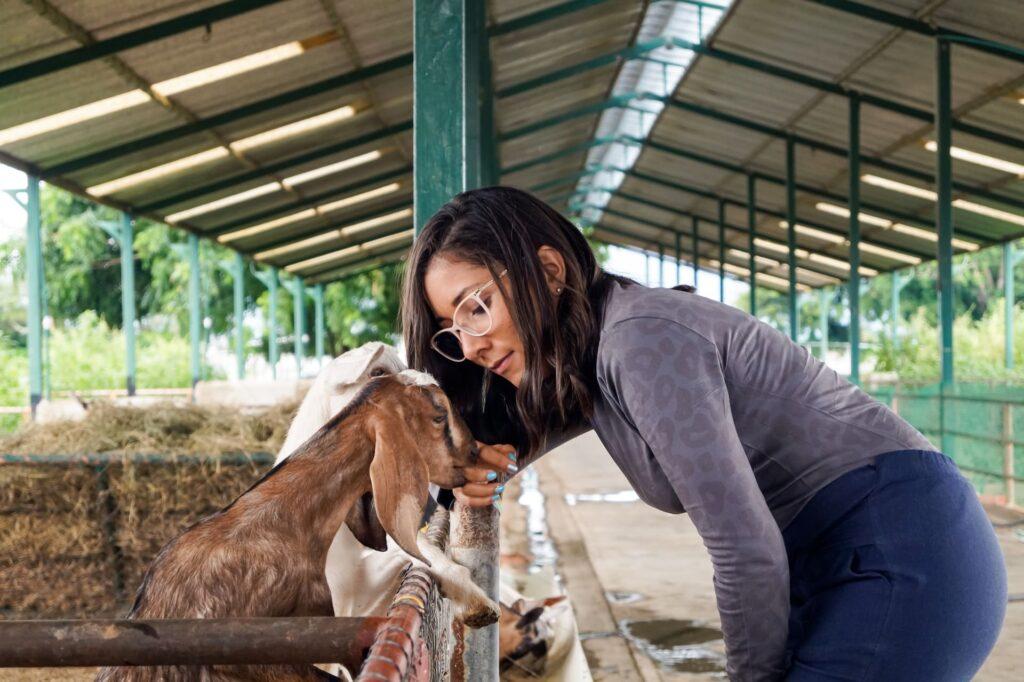 Veterinaria para Trabajar en Suiza como hispanohablante
